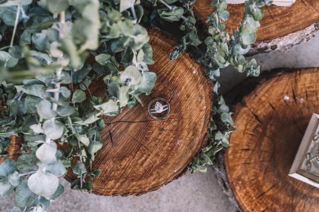 porte allaince original en rondin de bois