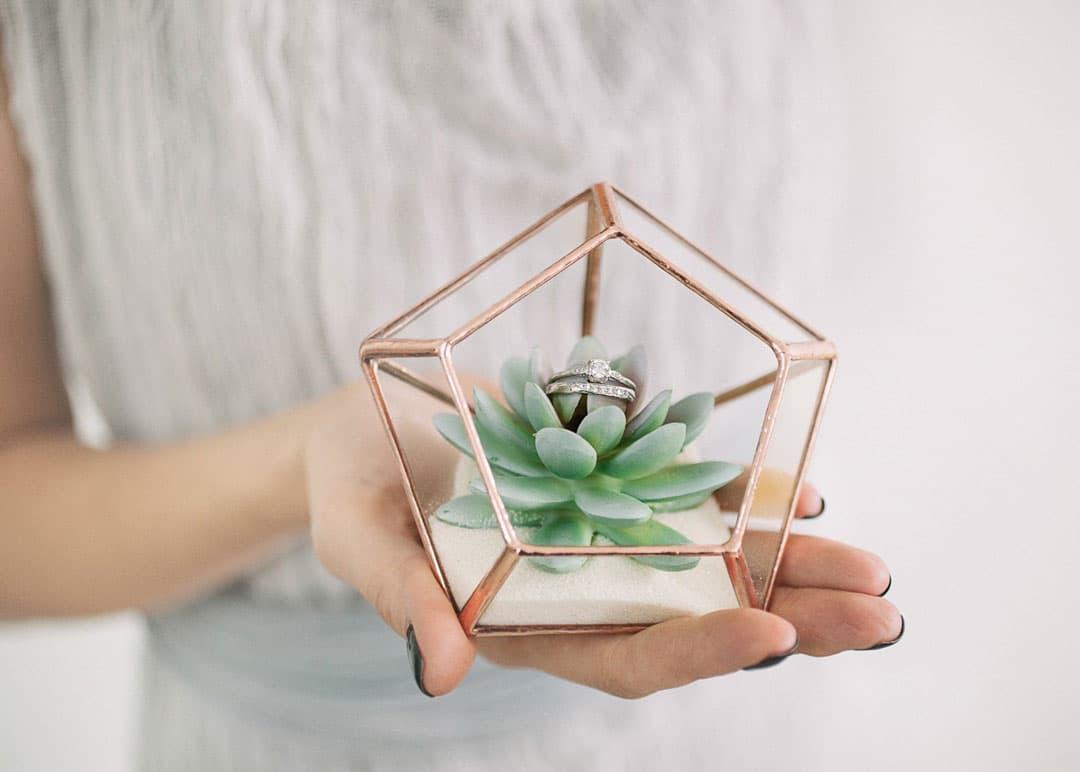porte alliance en verre avec plante et mousse a linterieur
