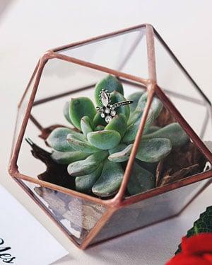 porte alliances terrarium avec fleurs et plantes à l'interieur