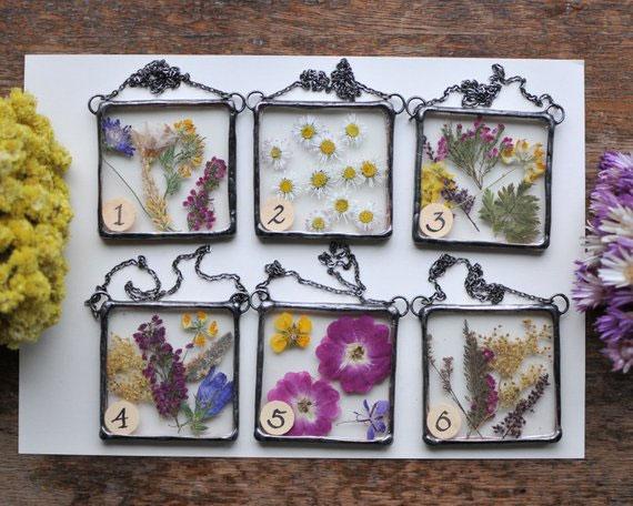 fleurs-pressees-sous-verre