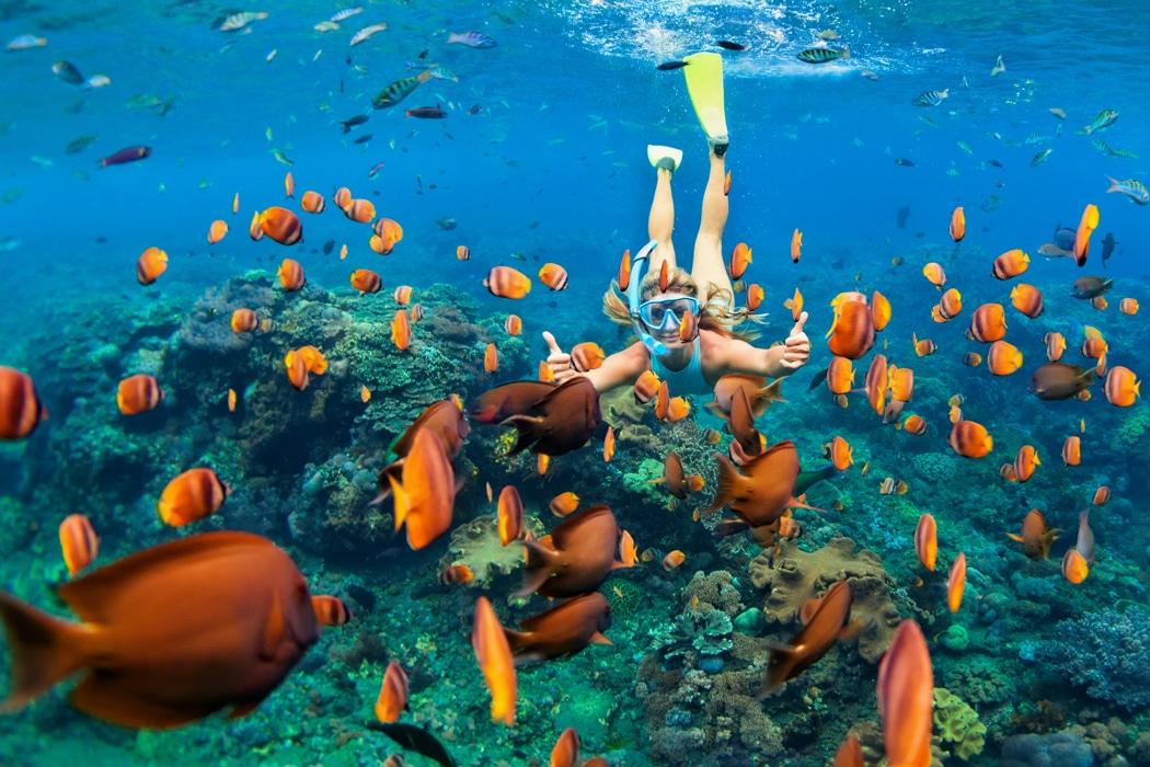 lune de miel maldives 2