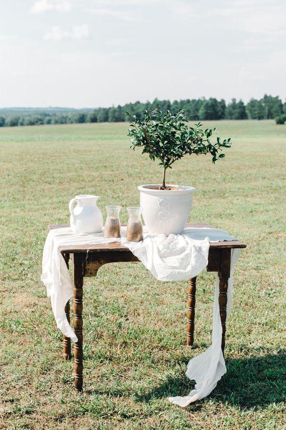 rituel-de-l-arbre